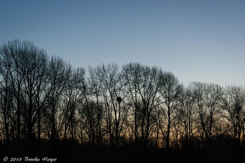 March21-03113.jpg