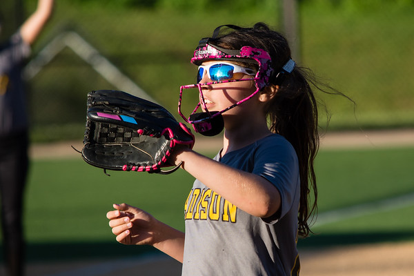 Madison Softball Spring 2019