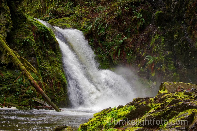 Goldstream Waterfall