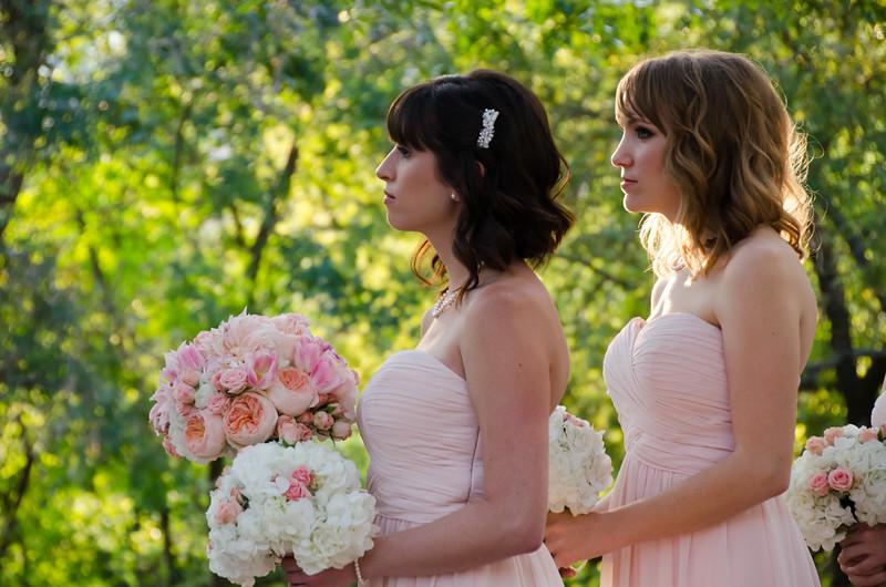 Andrew & Stefani Wedding Ceremony 2014-BJ1_5190.jpg