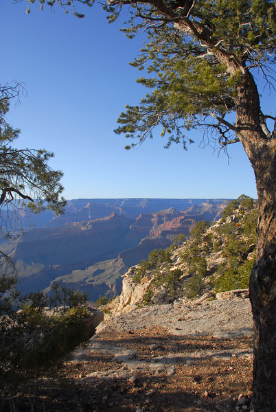 Grand Canyon near Pima Point