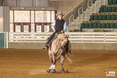 Sunday Novice Horse Set 2 Draw 10-16