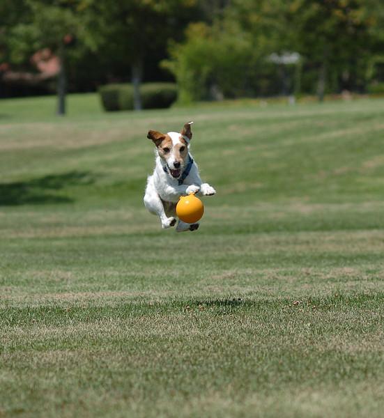 billy going for the ball.jpg