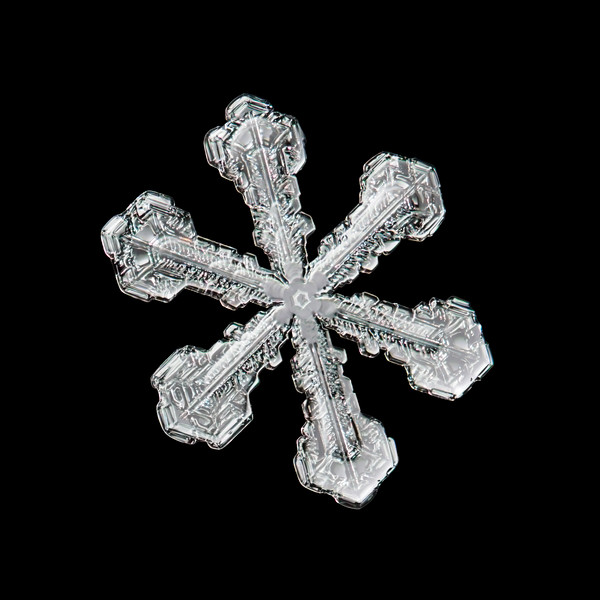 Melting Snowflake