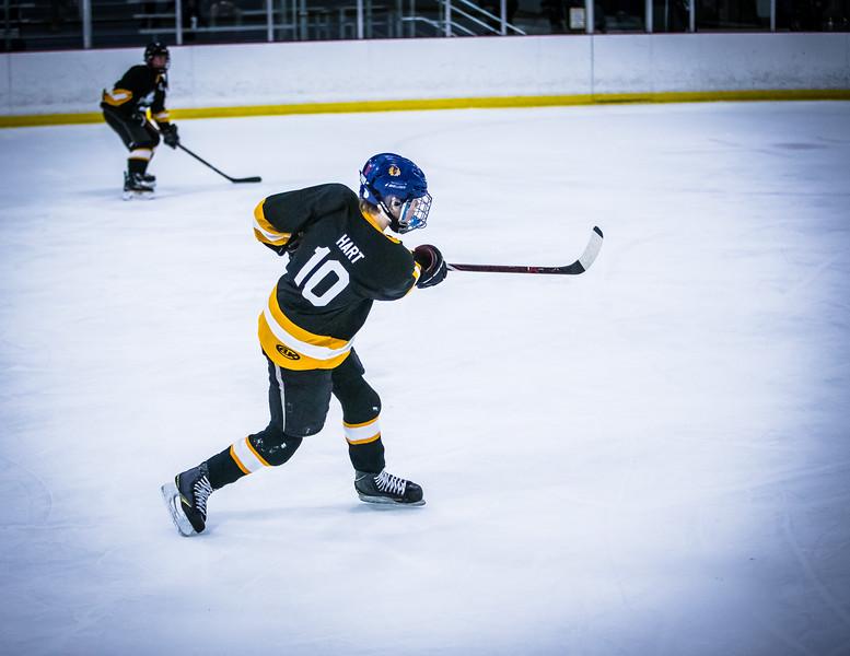 Bruins2-304.jpg