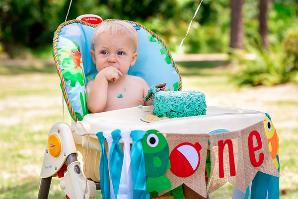 Hudson's First Birthday