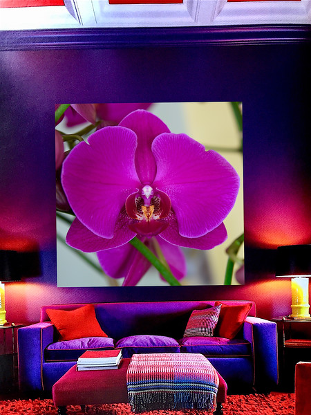 Orchid:Interior:Living Room.jpg