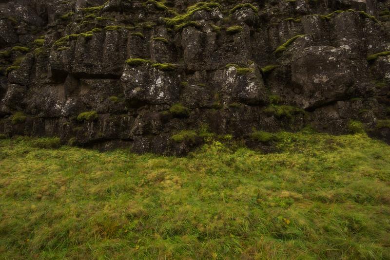 Thingvellir Up Close.jpg