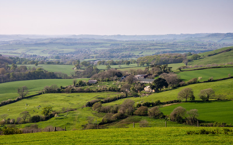 Marshwood Vale and the West Dorset Hills