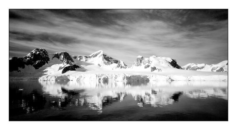 Antarctic Beauty