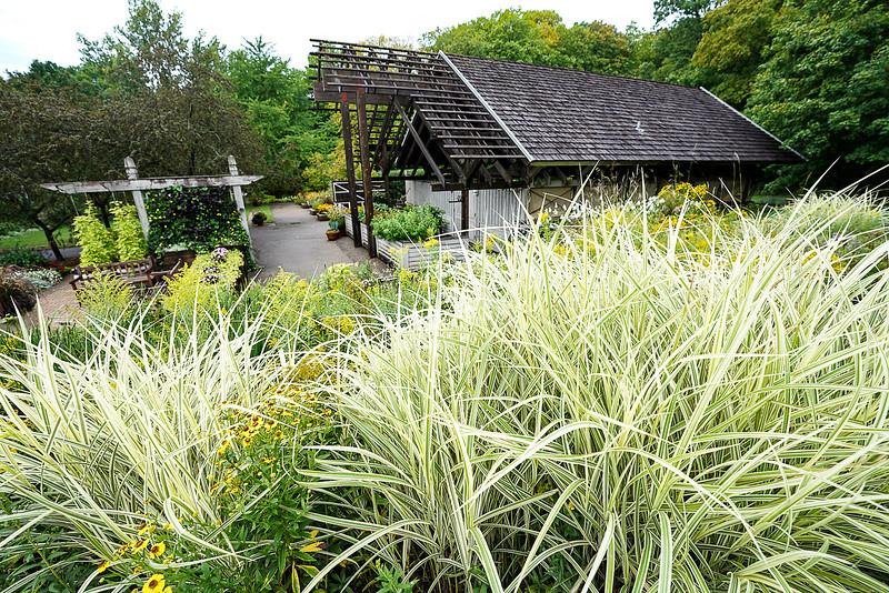 a 8 27 Arboretum-80.JPG
