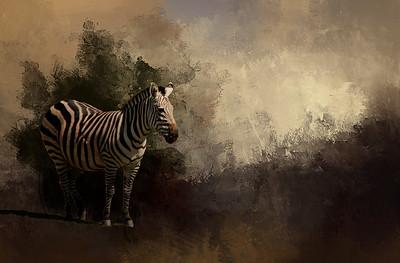 Animal Fine Art