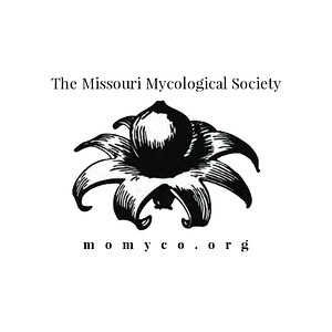 Missouri Mycological Society