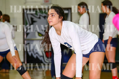 Volleyball JV