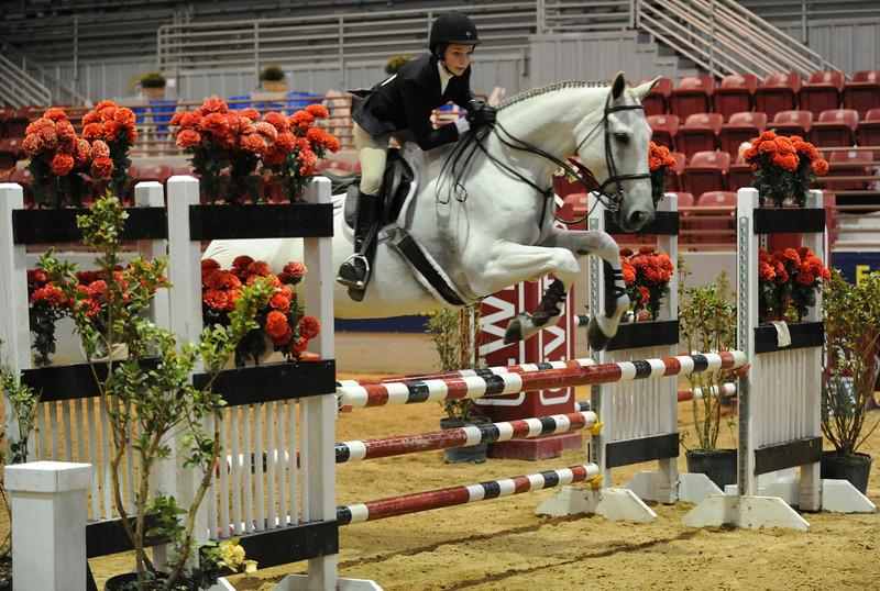 Horse show (81).jpg