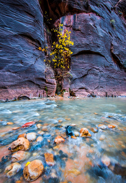 Zion National Park Autumn Colors & Winter Snow Fine Art Photography 45EPIC Dr. Elliot McGucken Fine Art Landscape and Nature Photography