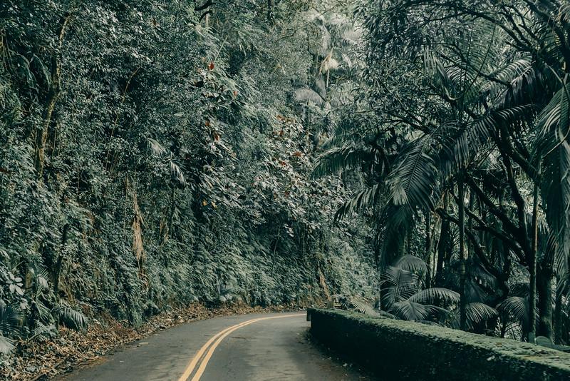 Hawaii20-371.jpg