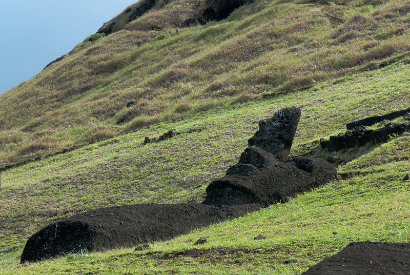 Maoi from the ground - Rapa Nui, Easter Island