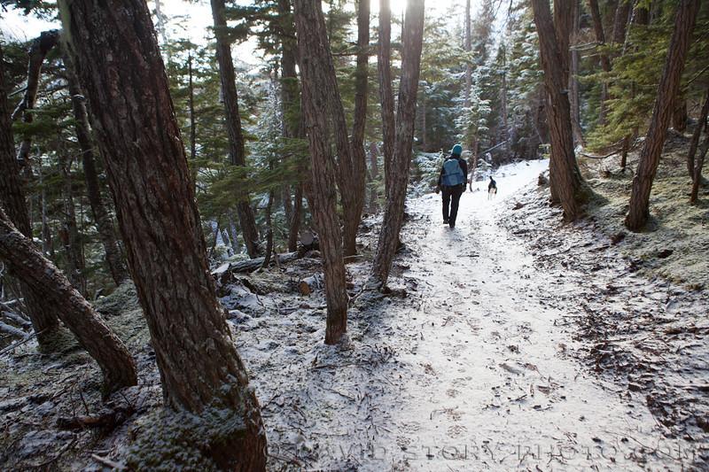 Hiking along the Falls Creek trail.