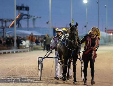 Harness Racing, Tir Prince