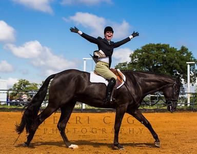 Stock Horse English