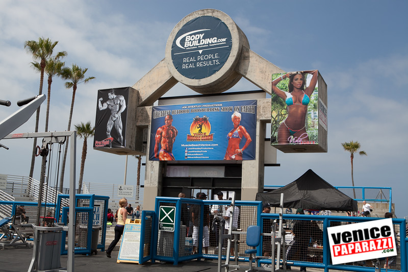 Golds Gym - Venice Paparazzi - Muscle Beach.  Join Gold's Gym So Cal on www.facebook.com/GoldsGymSoCal