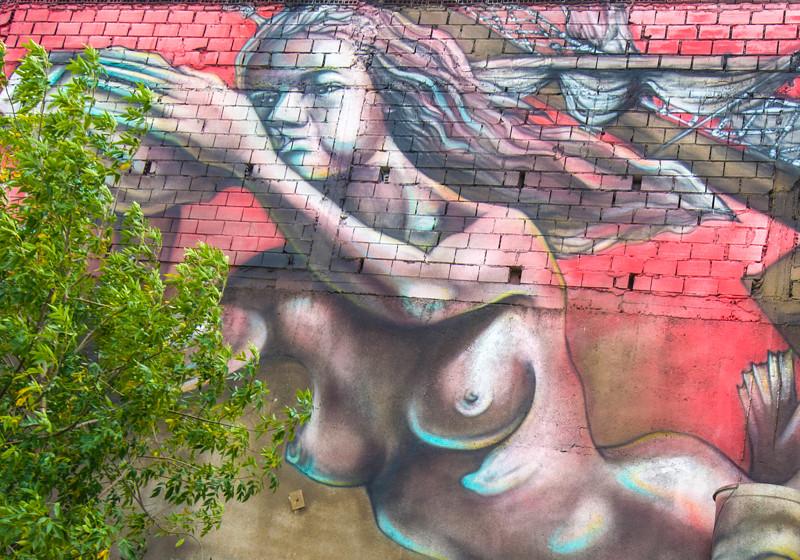 Buenos Aires_Murals-14.jpg