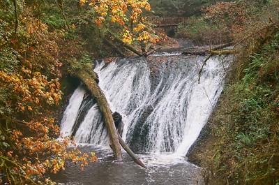 Silver Falls in Ektar 100 - 2020/09/24