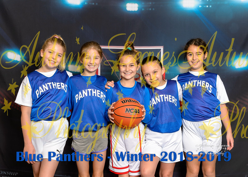 20190119 - # T1 3G Blue Panthers