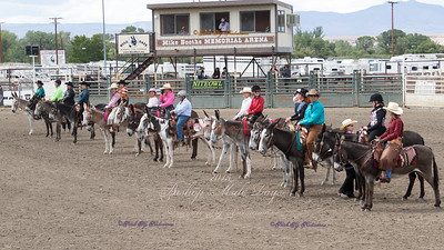 Friday Donkey Western Bishop 2015
