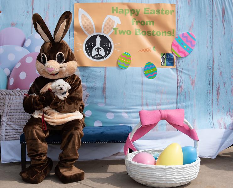 Easter2019TwoBostons-8219.jpg