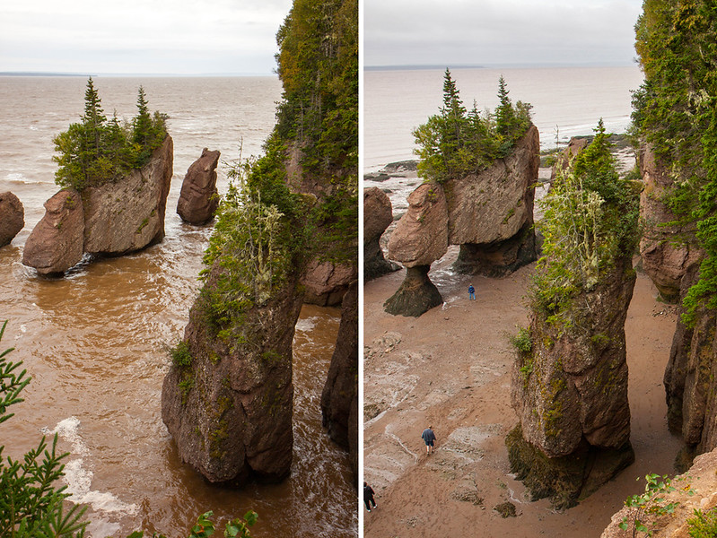 high_low tide Hopewell rocks.jpg