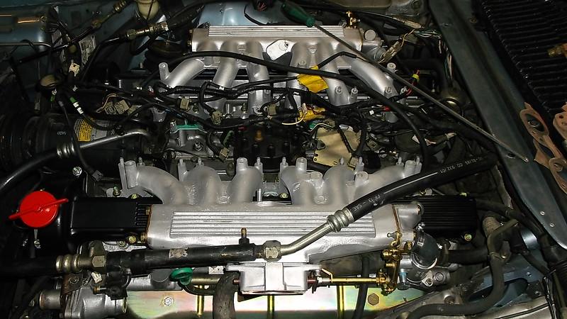 DSCF0297.JPG