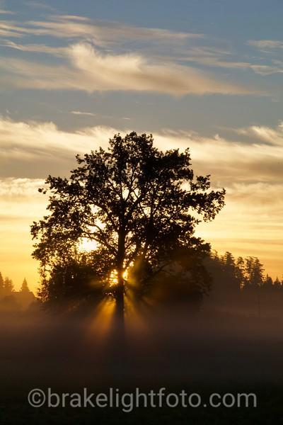 Sunrise on the Peninsula