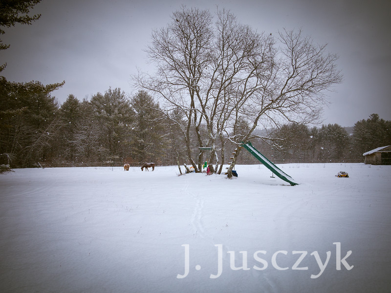 Jusczyk2020-1639.jpg