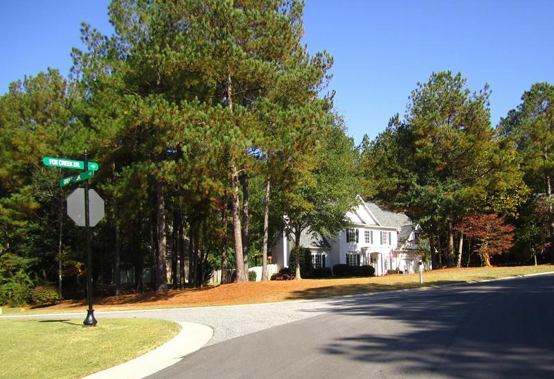 Fox Creek Cumming GA Homes (12).JPG