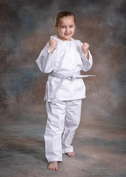 The Karate School -2019