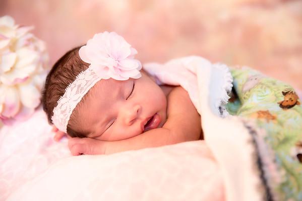 Alexis Newborn Session