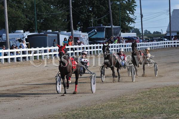 08-14-13 Sports Harness racing @ Henry Cnty Fair
