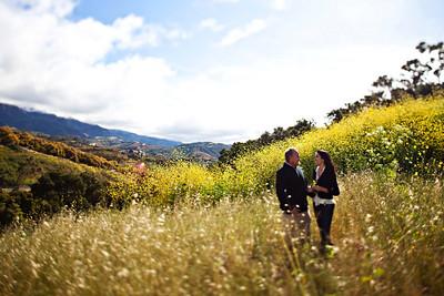 Diana and Craig : Engagement
