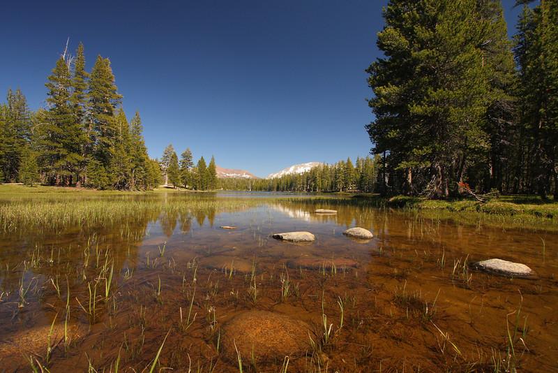 Yosemite 64.JPG