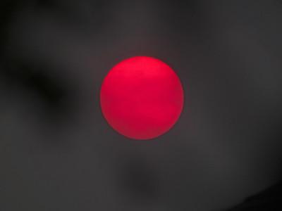 Recent Suns & Moons