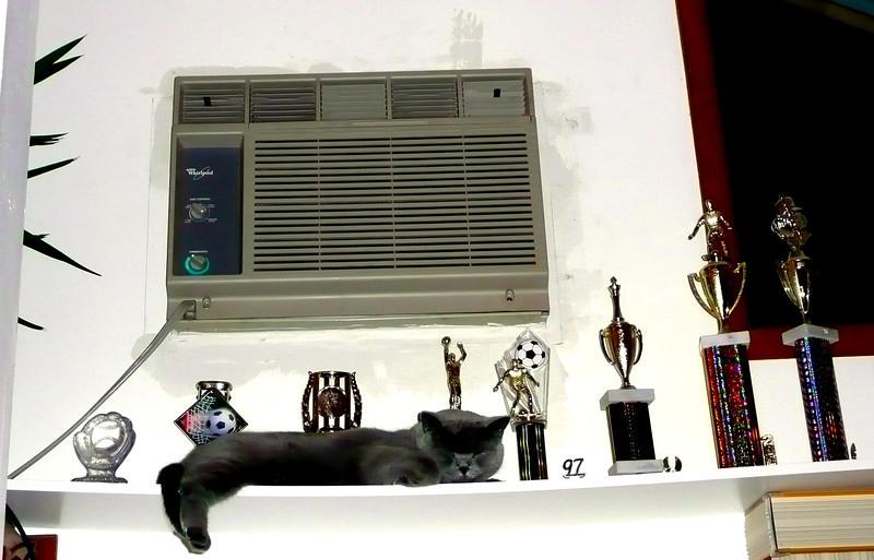 Ilya Prizes.jpg