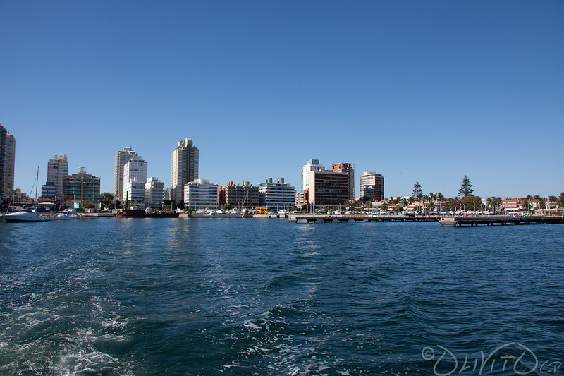 Port of Punta del Este