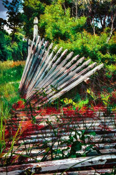 The Fence-5.JPG