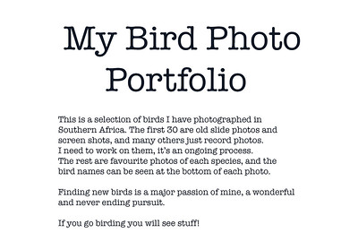 @RdT_Birds