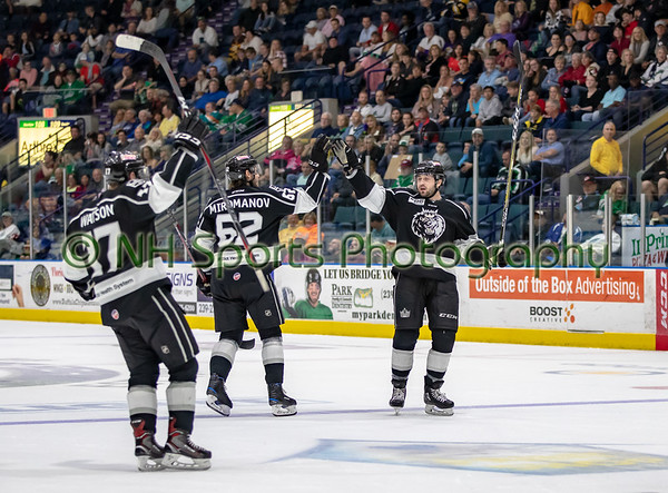 Manchester Monarchs at Florida Everblades 2-16