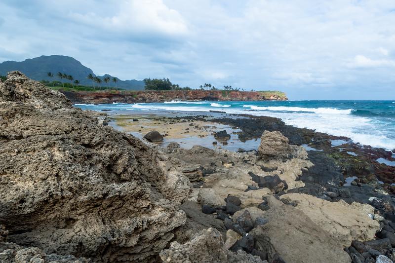 Kauai-3494.jpg