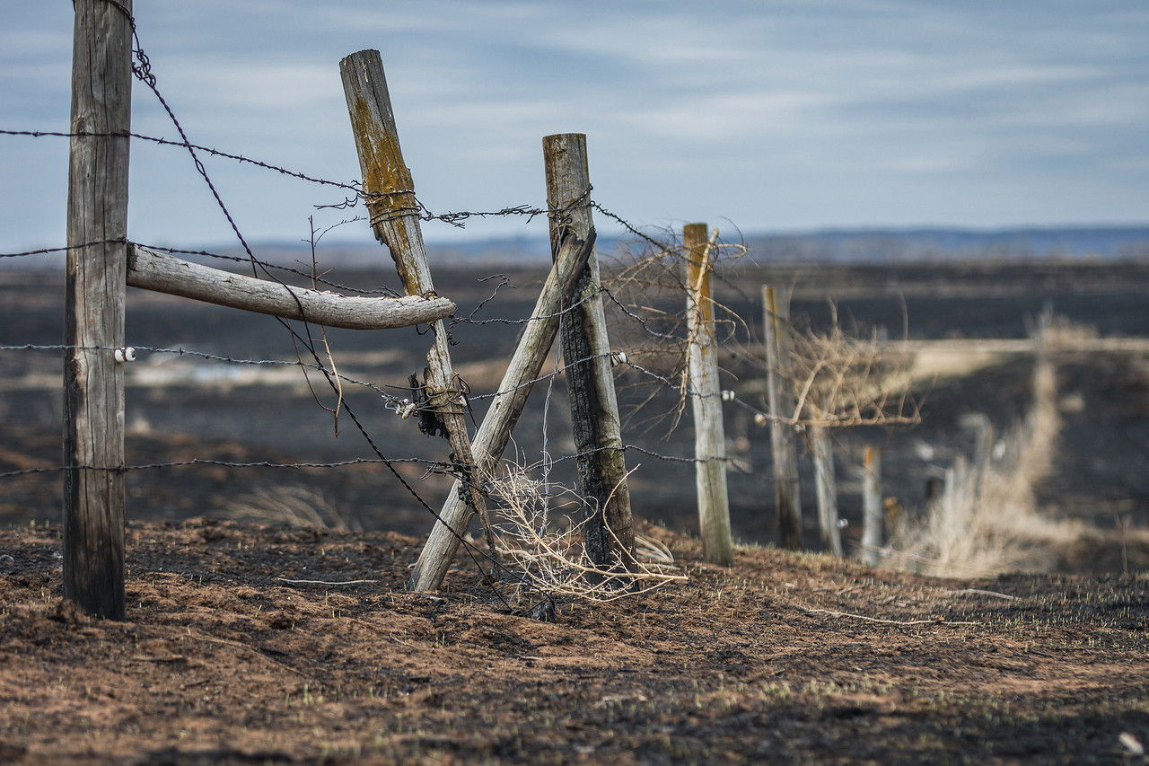 Photo by Dana Rich; The largest prairie fire in Kansas history turned much of Clark County in southwest Kansas into a pile of ash. Catholic farmers in Atchison were among the first to respond.