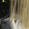 Washburn Raod,  East Freetown,, waterfall connects Mill Pond to Fall Brook which continues to Long Pond June 9, 2016